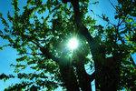 2006-04-21-024.jpg