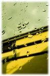 ガラスの雨.jpg